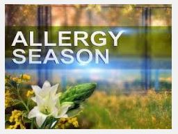Meniere's Disease and Pollen Allergy