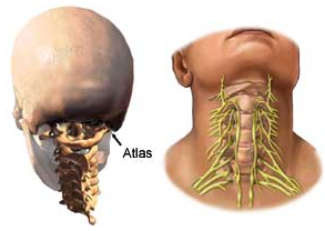 Links to neck and spine- Meniere's